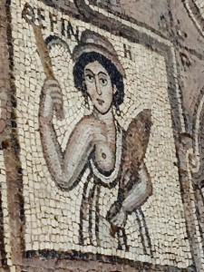 Amazon mosaic